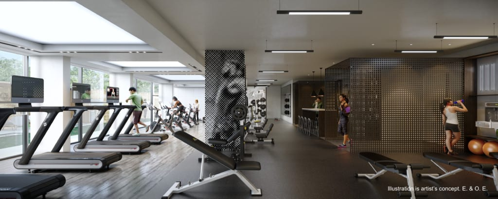line 5 gym