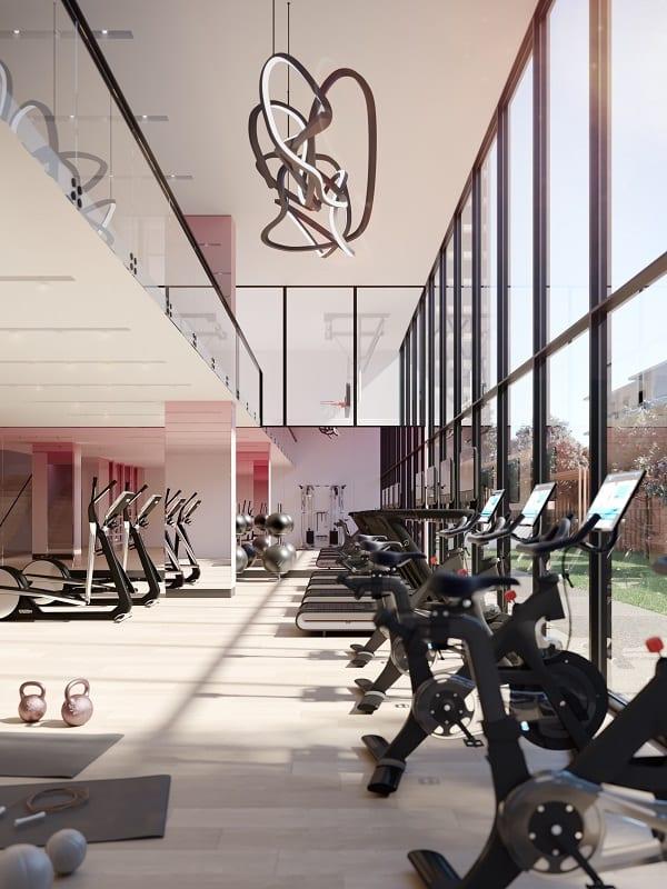 Untitled Gym